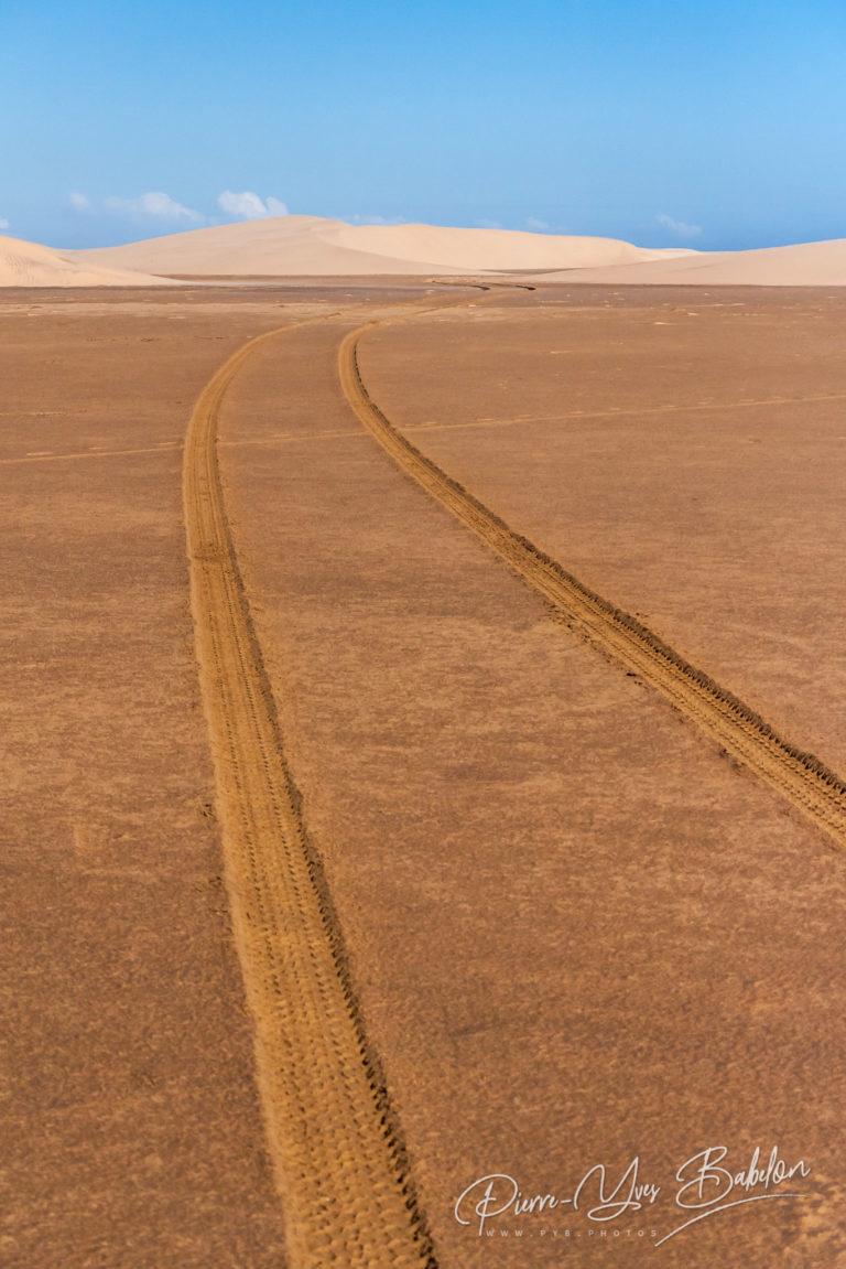 Tyre tracks through the desert