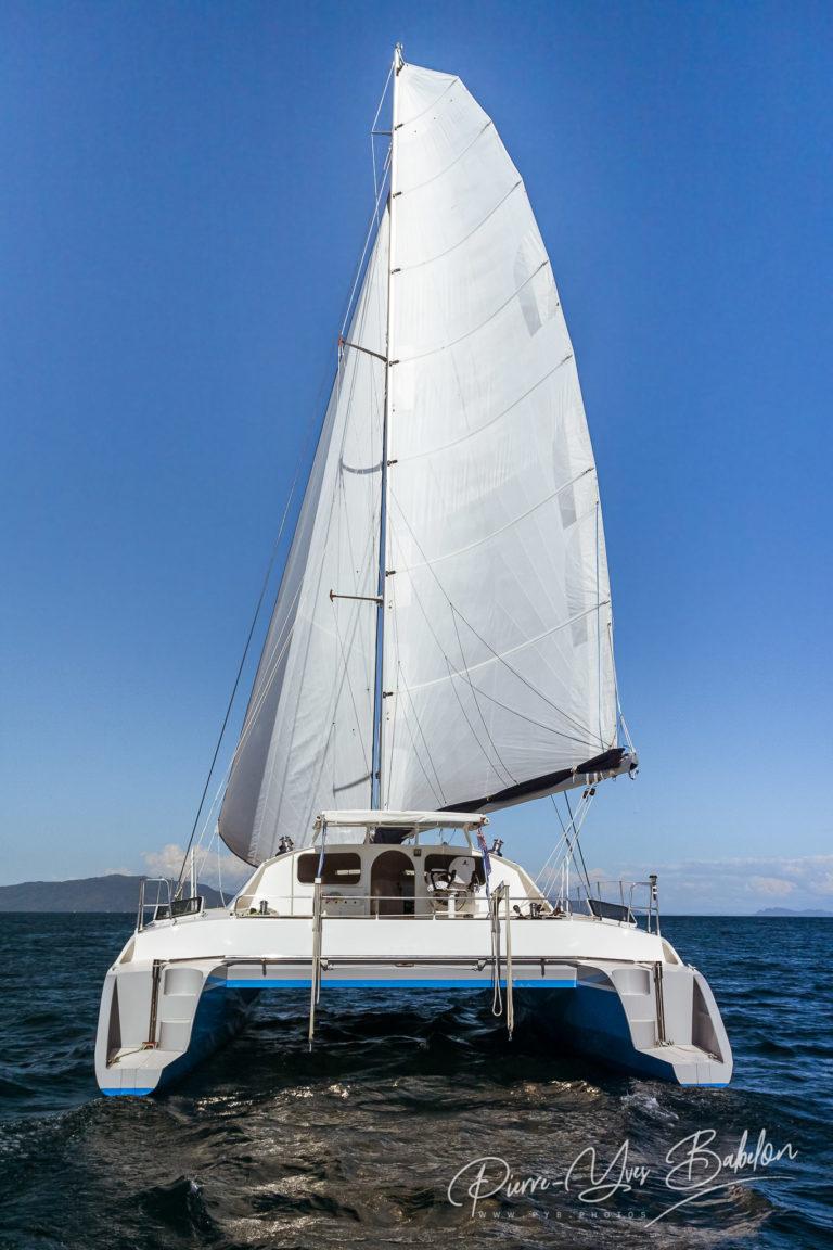 Luxury white catamaran