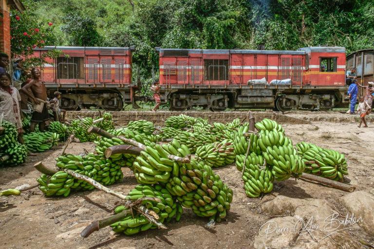 Chargement des bananes dans le train, Madagascar