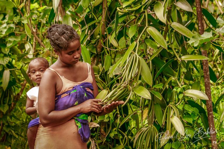 Cultivatrice de vanille à Madagascar