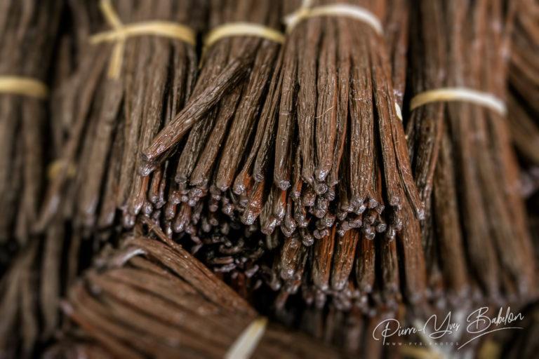 Gousses de vanille Bourbon de Madagascar