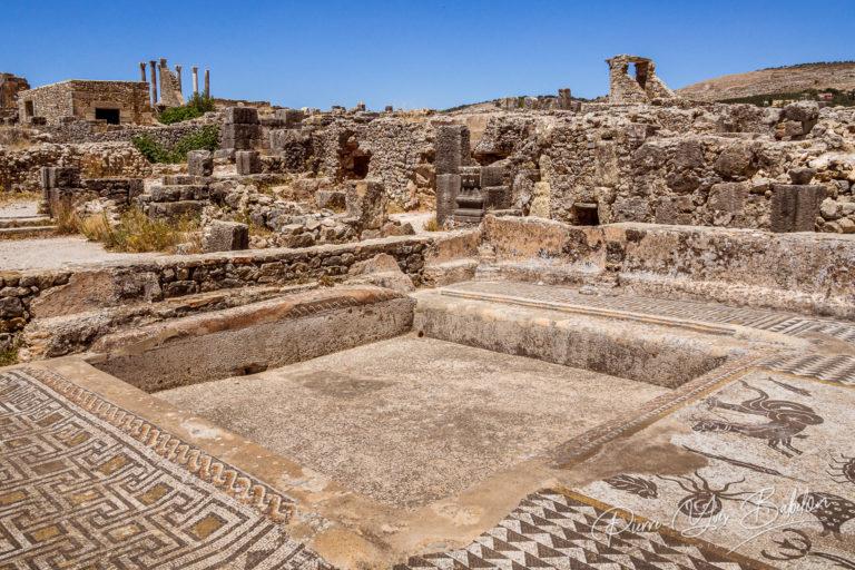 The Volubilis site in Morocco